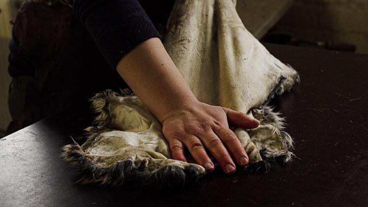 Hanna Nores hand bearbetar ett skinn.